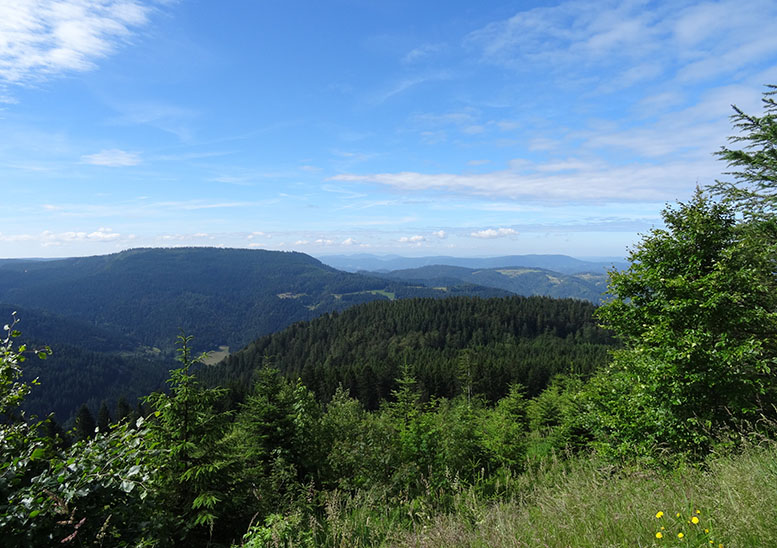 The Black Forest's scenery leaves a lasting impression
