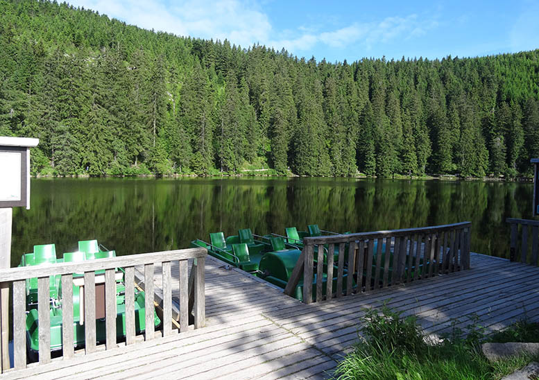 Hire a pedalo and see what the lakes around Black Forest have to offer